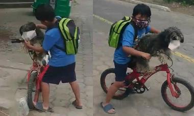 Cậu bé đeo khẩu trang cho chó trước khi đi mua sắm