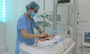 Bé sơ sinh bị bỏ rơi ở ruộng khoai tử vong