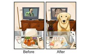 Cuộc sống của bạn thay đổi thế nào sau khi nuôi pet?