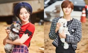 Idol Kpop diện đồ đôi với chó đi thi đại hội thể thao