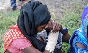 Bé gái 12 tuổi bị chôn vùi trong núi rác, xung quanh là bầy chó hoang
