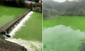 Dòng sông bỗng chuyển màu xanh lá cây sau một đêm