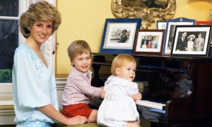 14 khoảnh khắc ngọt ngào của Công nương Diana và anh em William - Harry